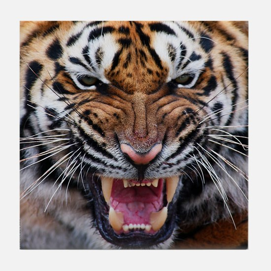 Big Cat Tiger Roar Tile Coaster