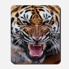 Big Cat Tiger Roar Mousepad
