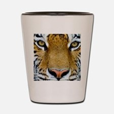 Big Cat Tiger Roar Shot Glass