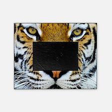 Big Cat Tiger Roar Picture Frame