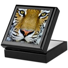 Big Cat Tiger Roar Keepsake Box