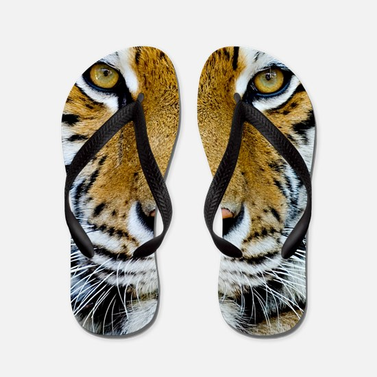 Big Cat Tiger Roar Flip Flops
