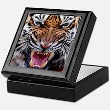 Big Cat Tiger Roar Keepsake Box