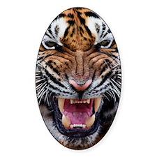 Big Cat Tiger Roar Decal
