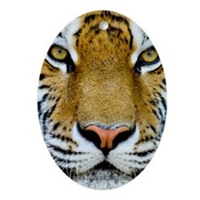 Tiger Oval Ornament
