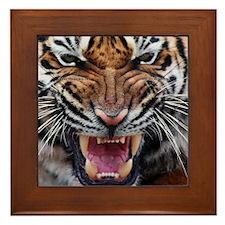 Tiger Mad Framed Tile