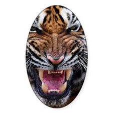 Tiger Mad Decal