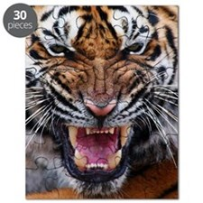 Tiger Mad Puzzle
