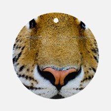 Tiger Round Ornament