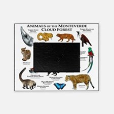 Animals of the Monteverde Cloud Fore Picture Frame