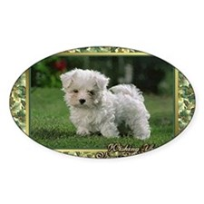 Maltese Dog Christmas Decal