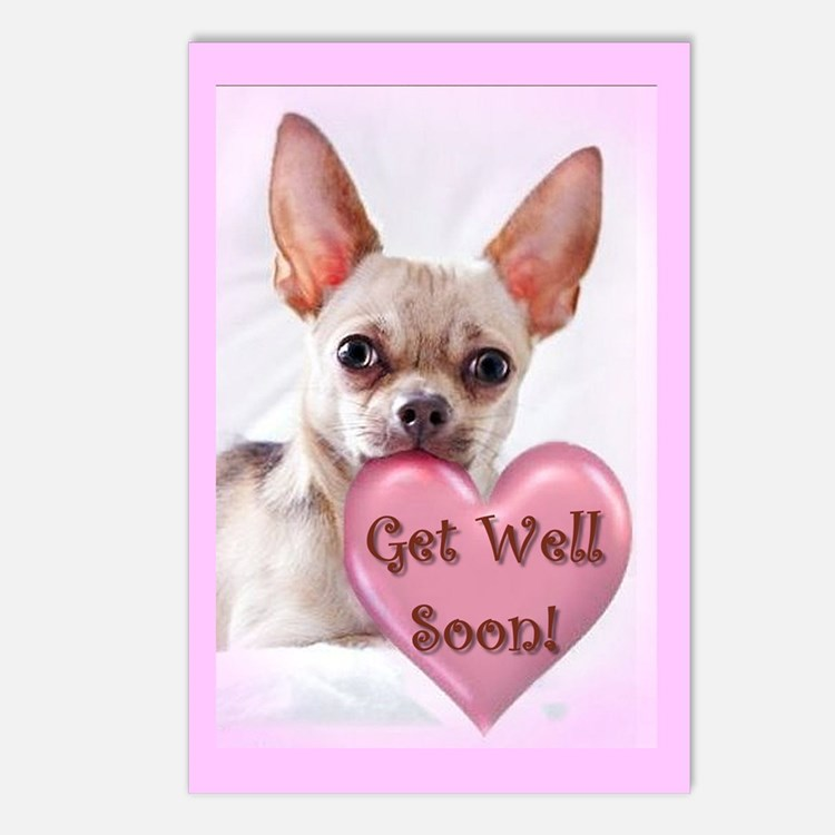 Get Well Soon Chihuahua Dog Postcards (Package Of