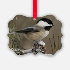 Black- Capped Chickadee Ornament