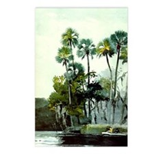 Winslow Homer - Homosassa Postcards (Package of 8)