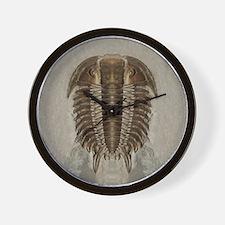 Trilobite Fossil Wall Clock