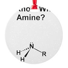 Ya Know What Amine (1200x1500) Ornament