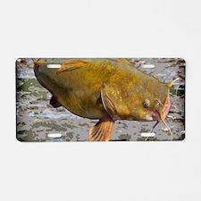Flathead Catfish Rug Aluminum License Plate