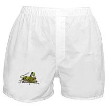 Green Cricket Boxer Shorts
