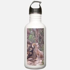Bighorn Water Bottle 1.0L