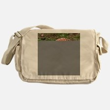 FlyAgaric012 Messenger Bag