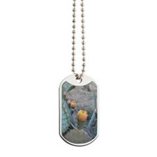 Cactus Plant Dog Tags