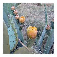 """Cactus Plant Square Car Magnet 3"""" x 3"""""""