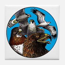 Raptors Tile Coaster