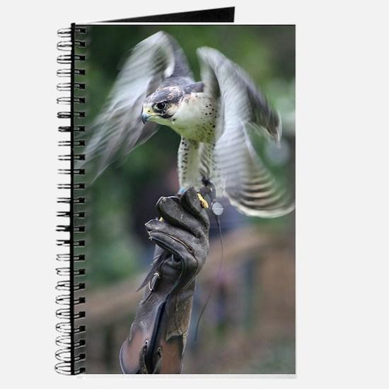 Falconry Journal