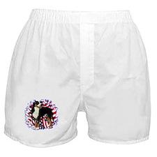 Swissy Patriotic Boxer Shorts