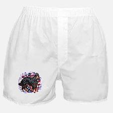 Gordon Patriotic Boxer Shorts