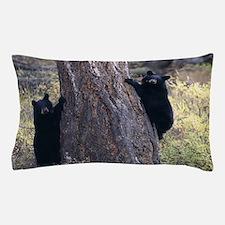 black bear cubs Pillow Case