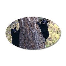 black bear cubs 35x21 Oval Wall Decal