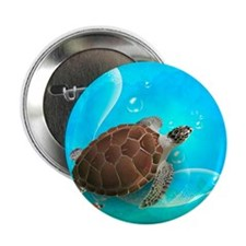 "Cute Sea Turtles 2.25"" Button"