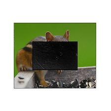 chipmunk Picture Frame