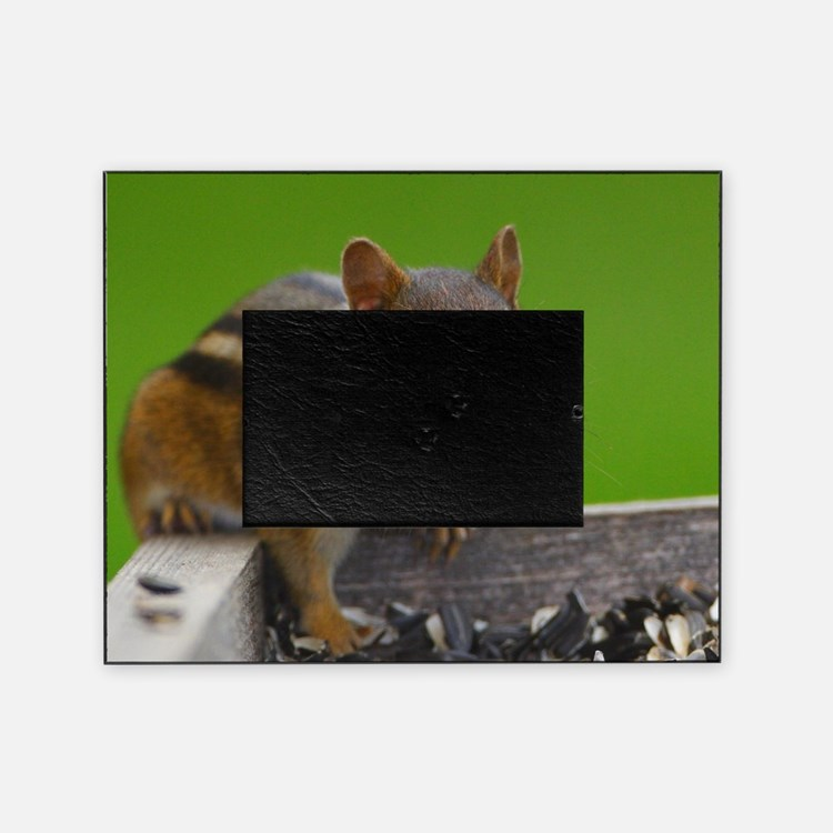 chipmunk Picture Frame