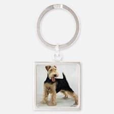 Looking for Fun Square Keychain