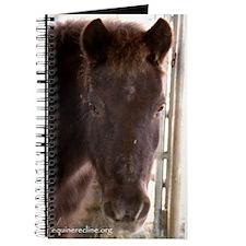 Alf Journal