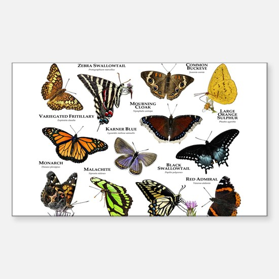 Butterflies of North America Sticker (Rectangle)