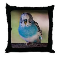 Blue Budgie Throw Pillow