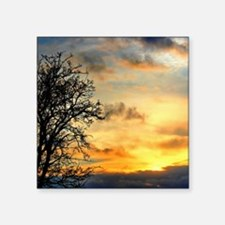 Tree Silhouettes at Sunset Sticker