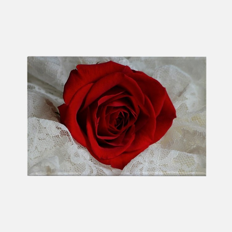 Wonderful Red Rose Rectangle Magnet