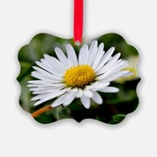 White Flower Ornament