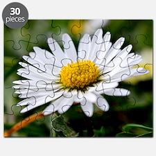 White Flower Puzzle
