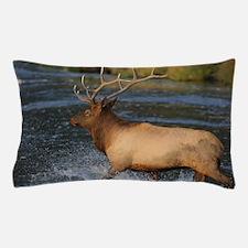 elk splashing in the water Pillow Case