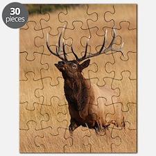 elk charging Puzzle
