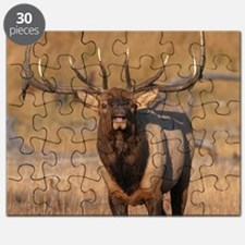 Look at Me! Puzzle