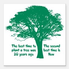 """Plant a Tree Now Square Car Magnet 3"""" x 3"""""""