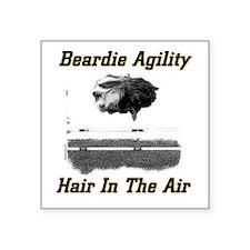 Beardie Agility: Hair In The Air Sticker