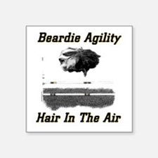 Beardie Agility: Hair In The Air Sticker