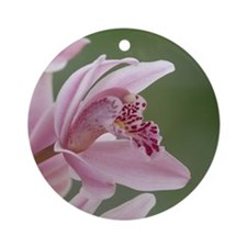 Perfect Pink Orchid Round Ornament